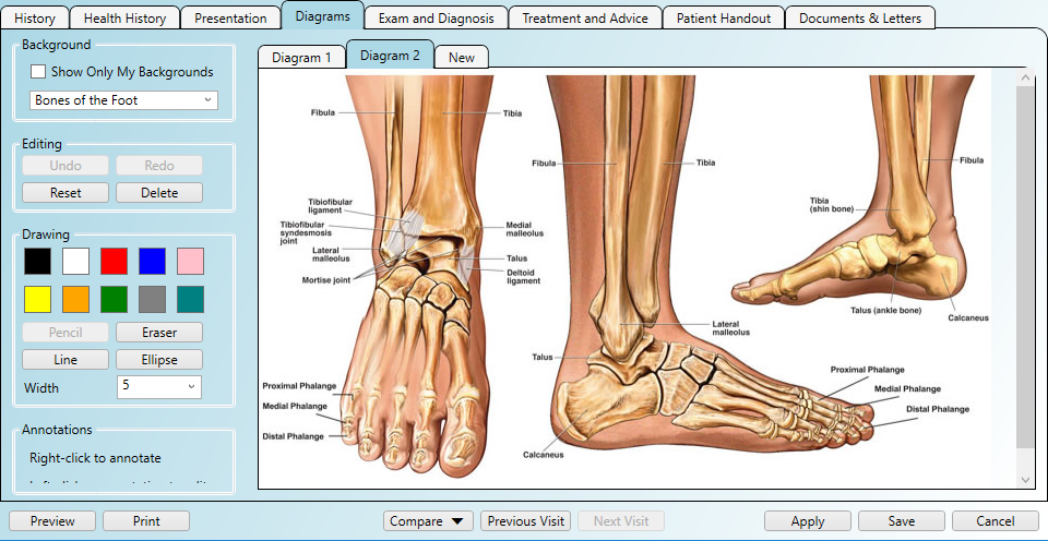 Practice Master Pro  Podiatry Software